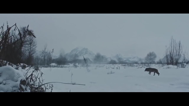 The Hunt  from Leica -Leica Camera's ad depicting Tiananmen Square's 'Tank Man' China